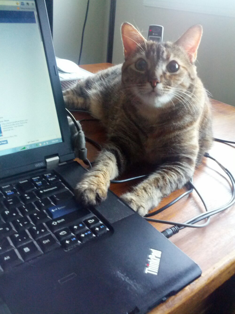 Roslin helping with the Enter key