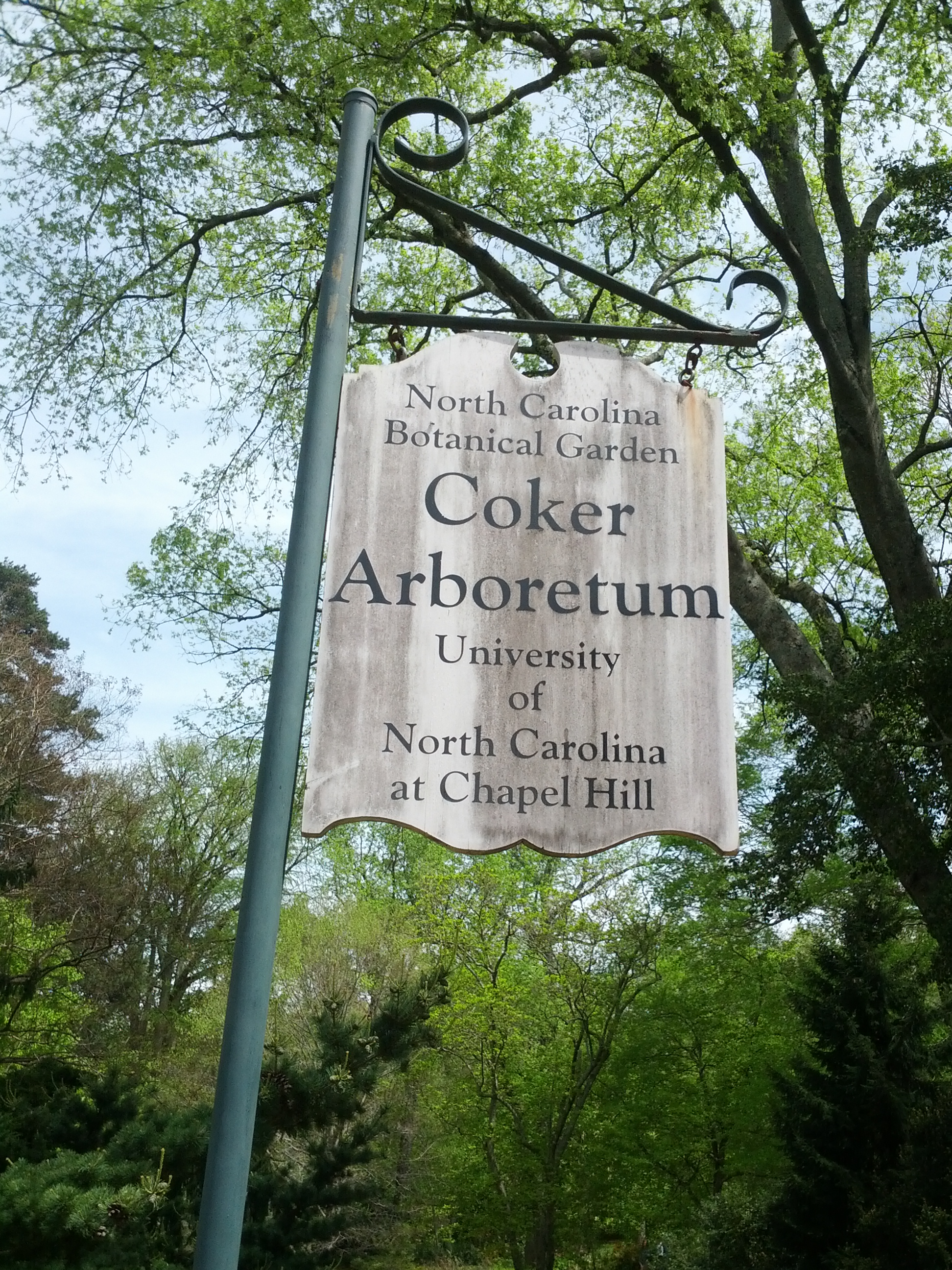 Easter Sunday at Coker Arboretum