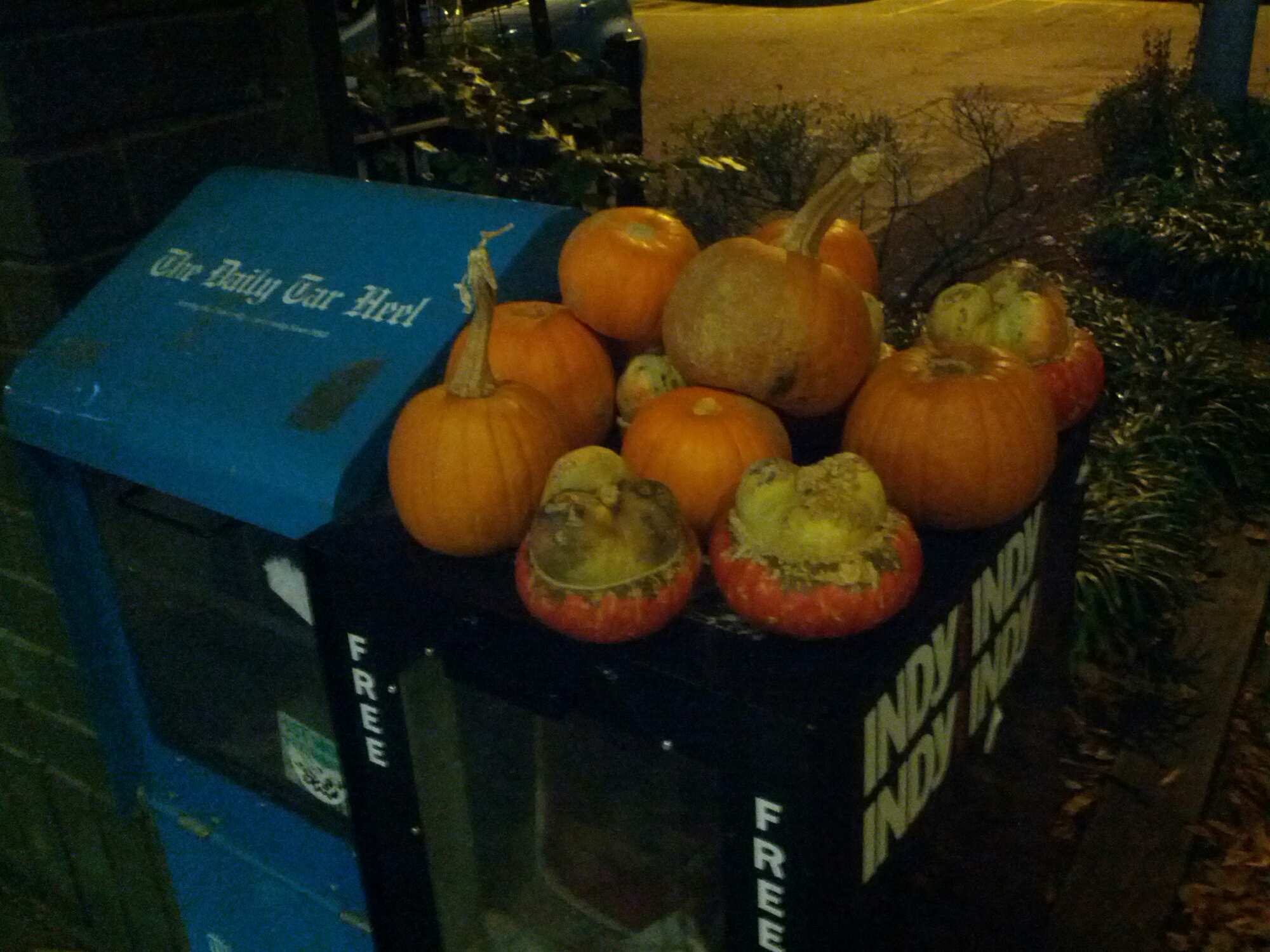 Looks like decorative gourd season is over