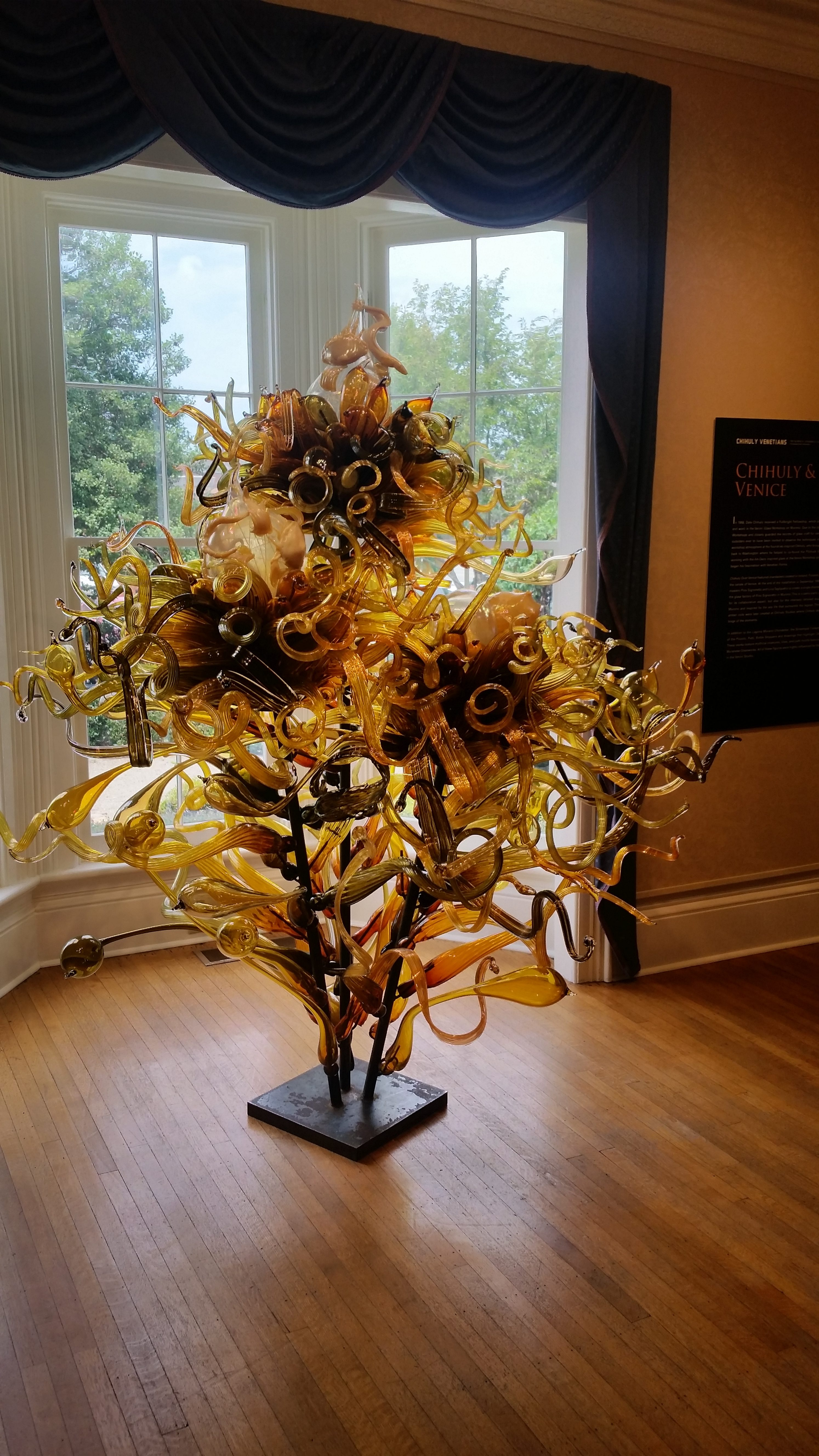 Chihuly Exhibit @ Alamance Arts 2016