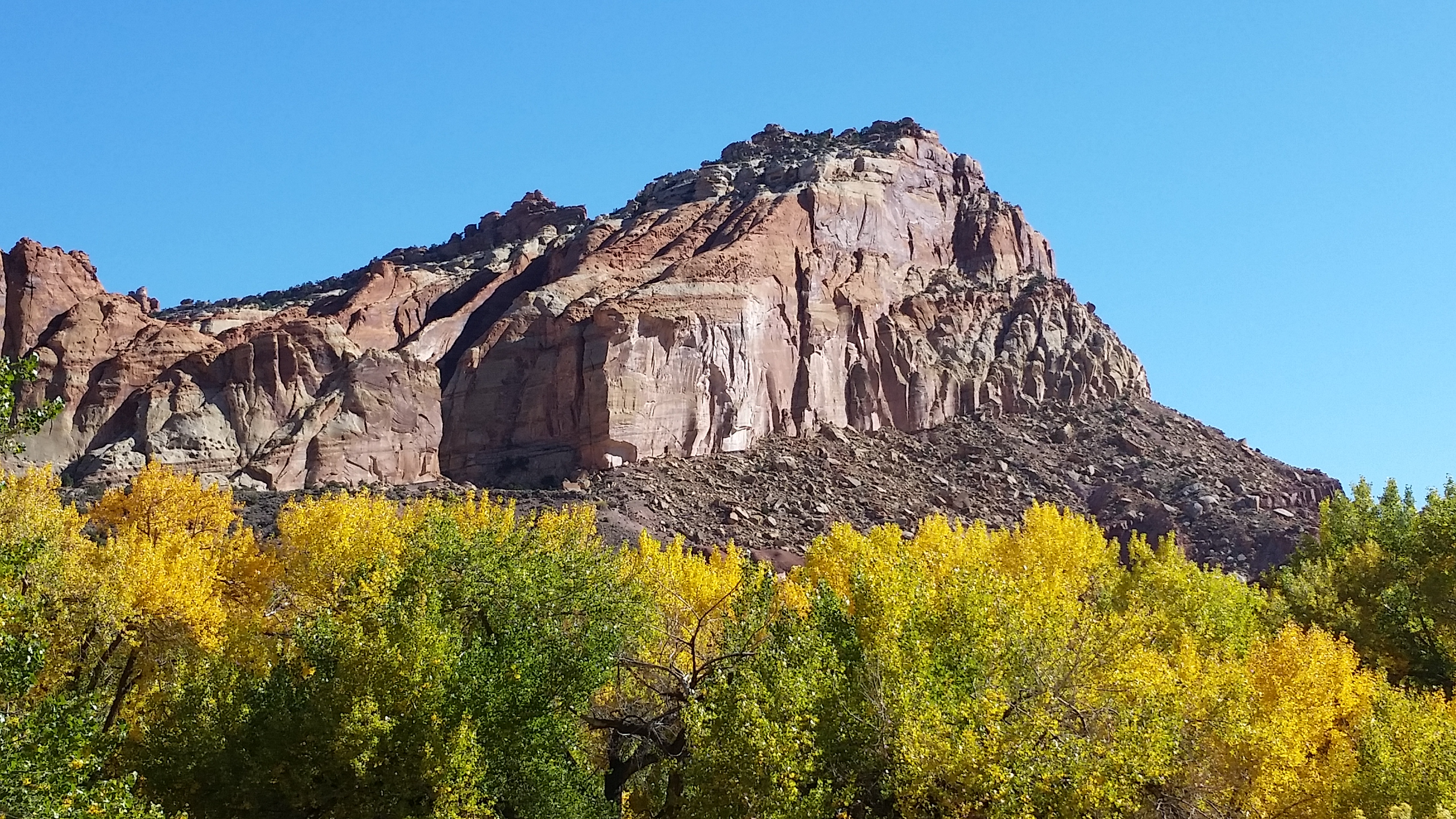 Highlights from Capitol Reef National Park