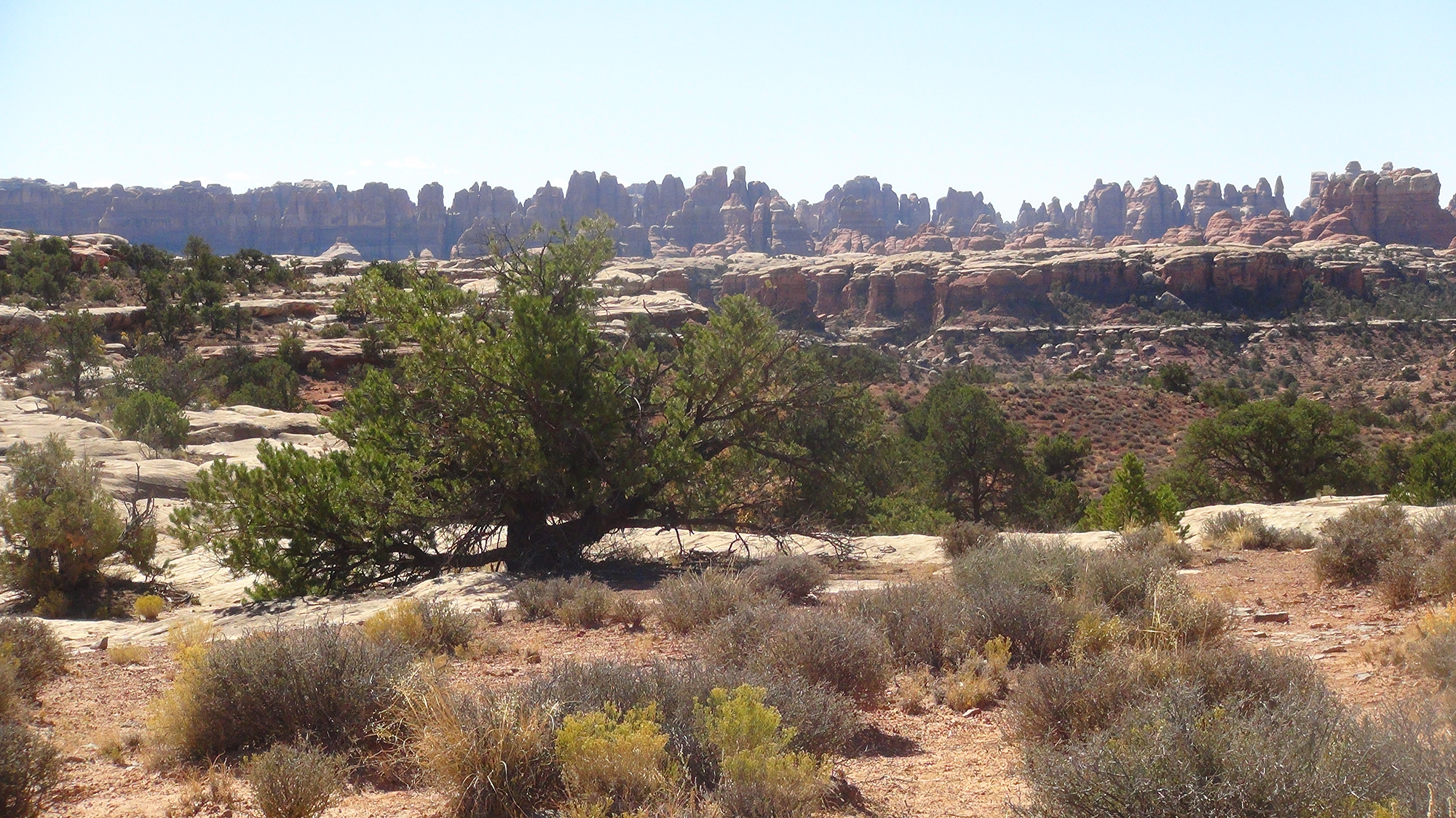 Highlights from Canyonlands