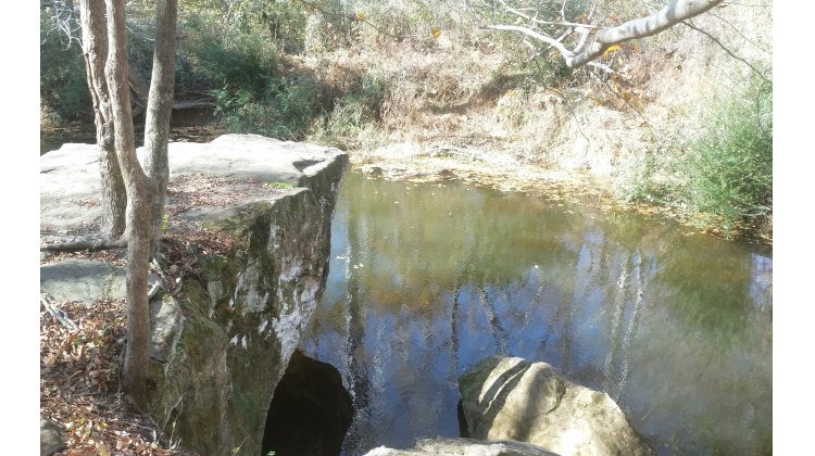 Hollow Rock Nature Area